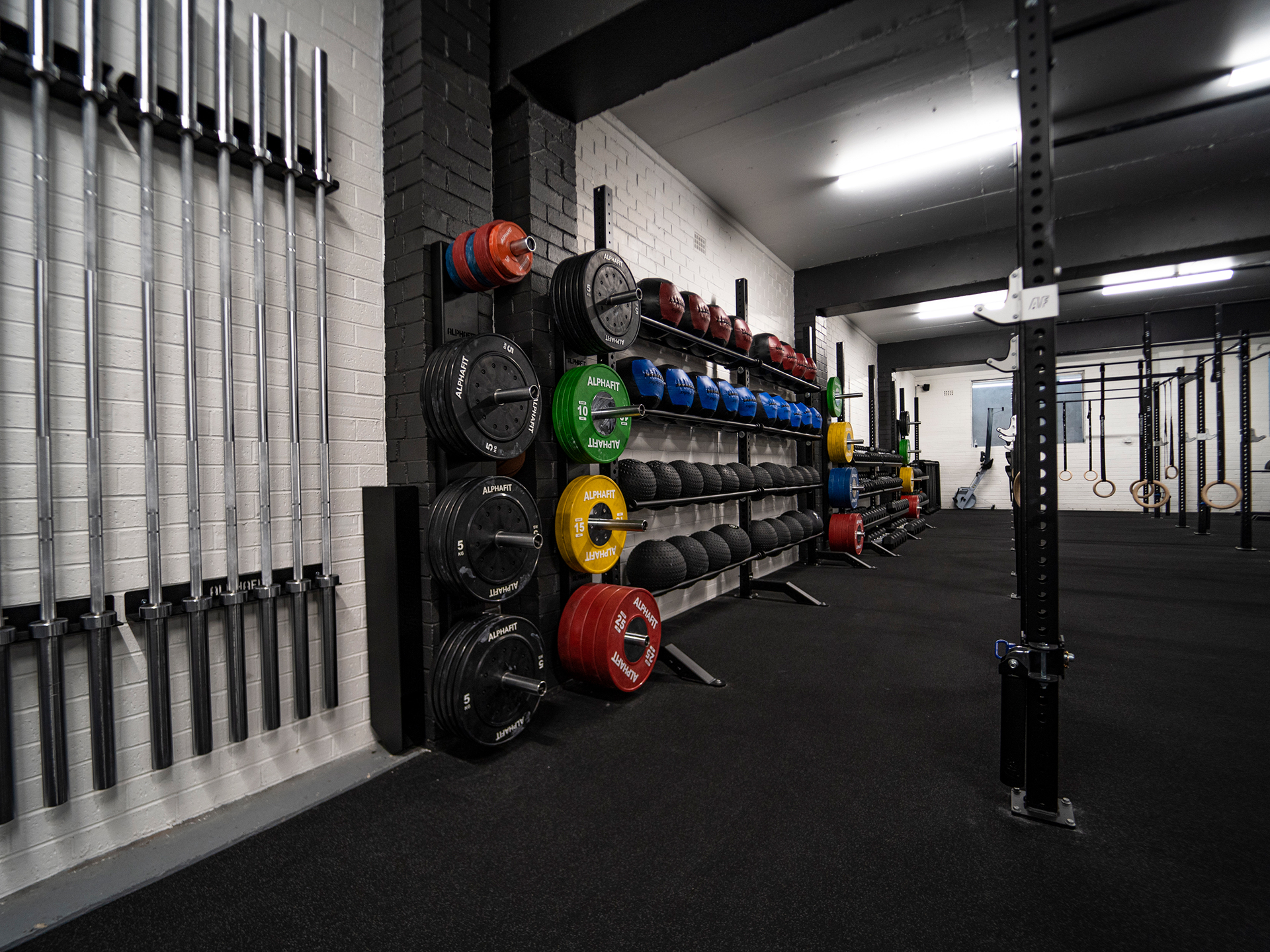 Tribe Headquarters Strength and Conditioning Gym Fitout