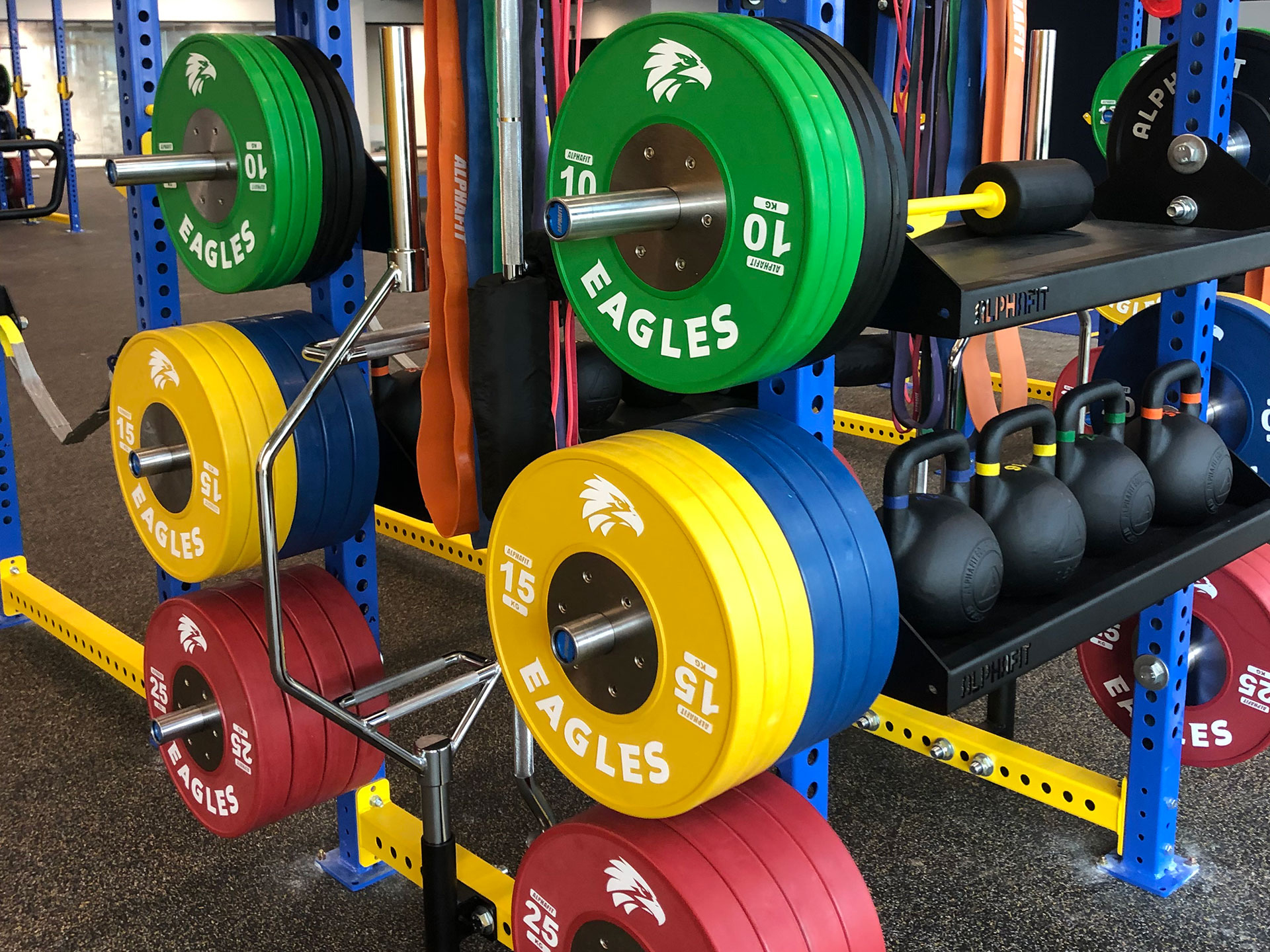 West Coast Eagles Gym Fitout