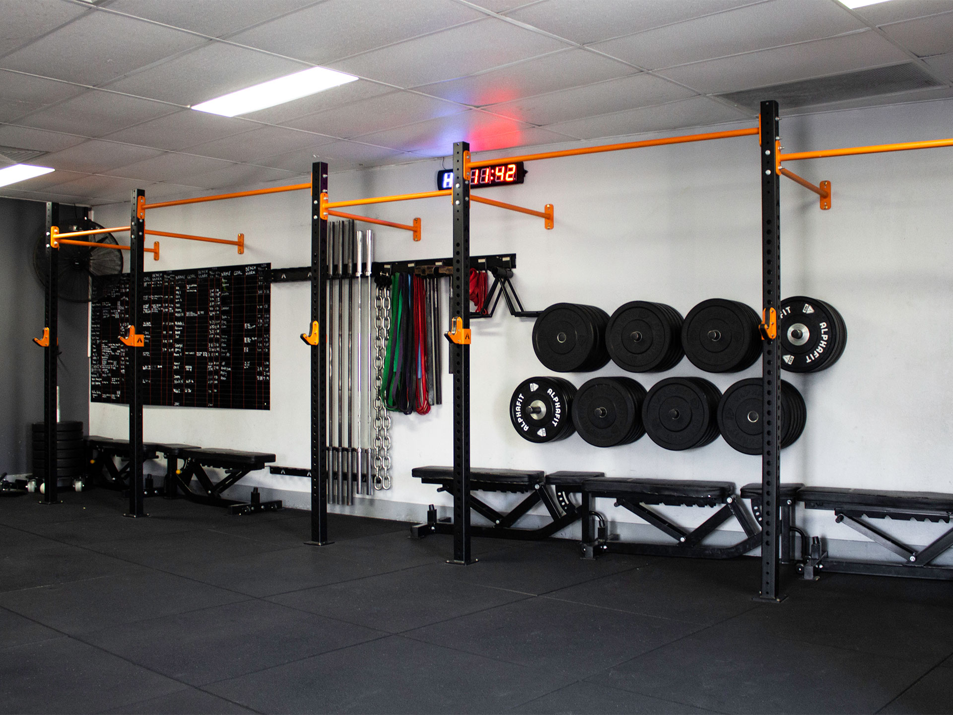 Body Coaching High Performance Strength and Conditioning Gym Fitout