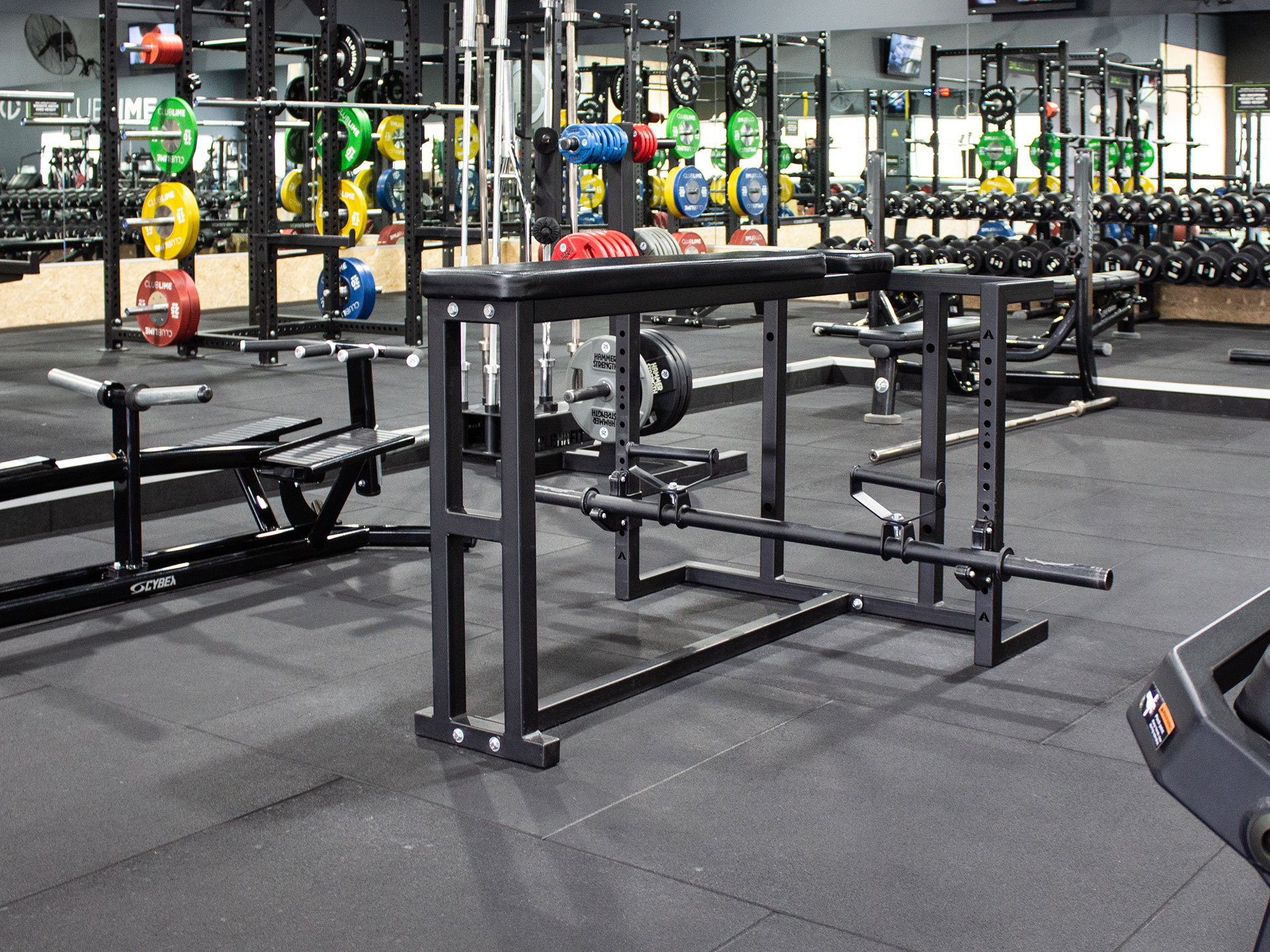 Club Lime Kambah Gym Fitout