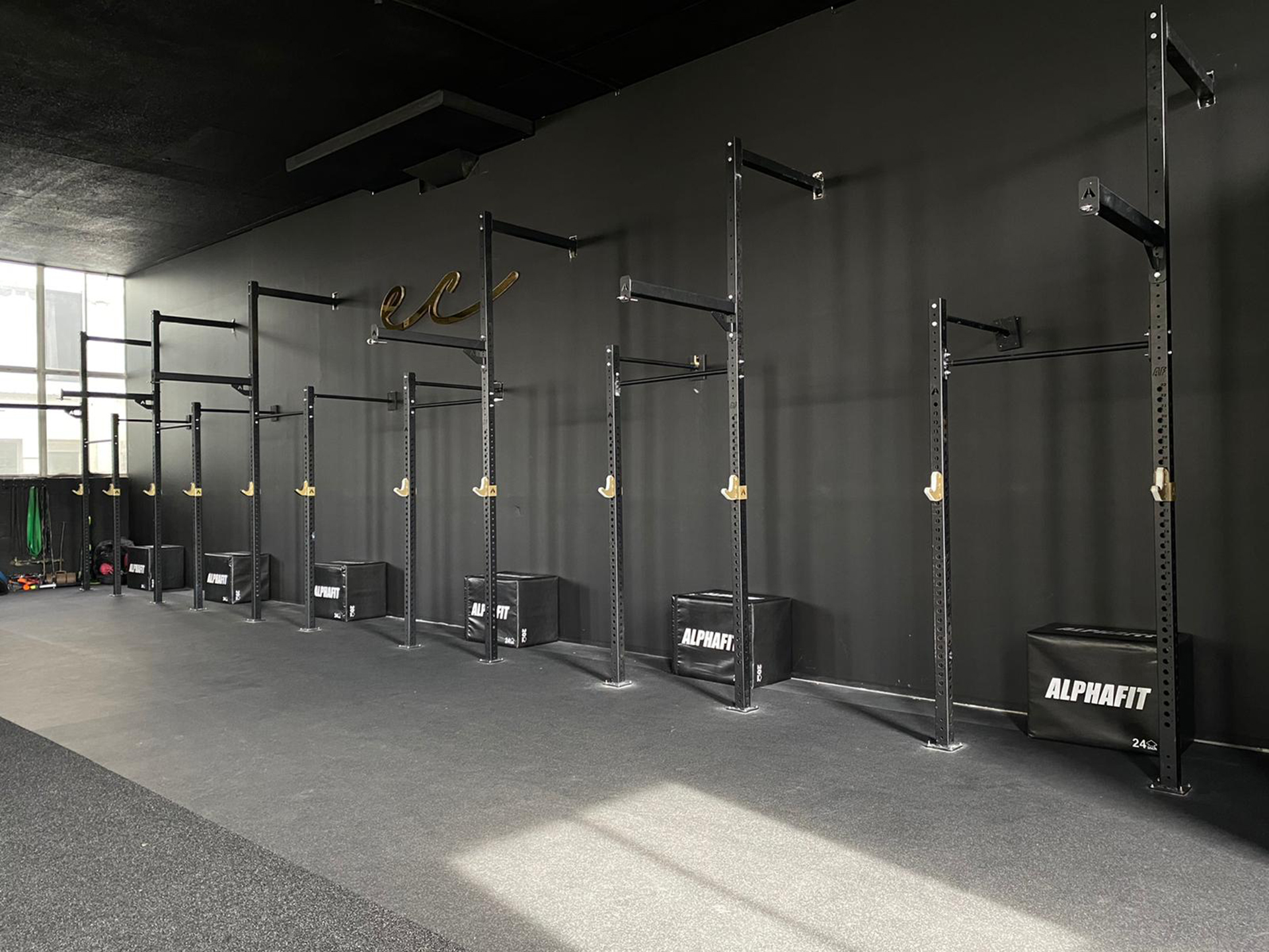 Enliven Coaching Functional Fitness Gym Fitout
