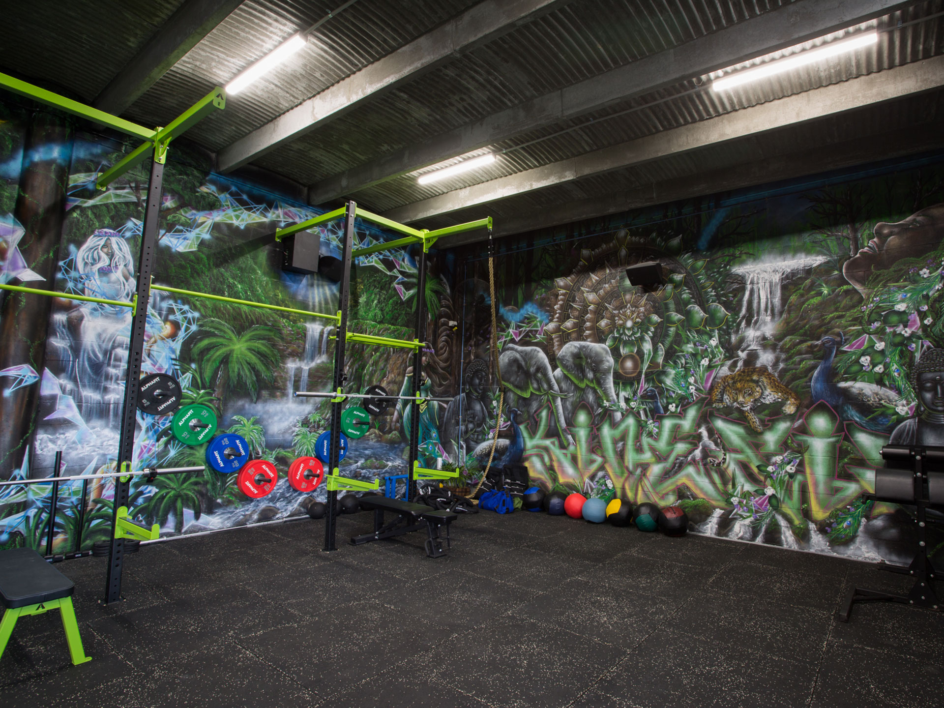 Kinesis HP Functional Fitness Gym Fitout