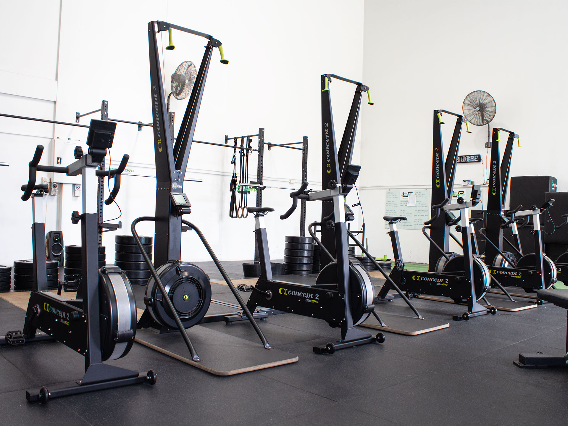 Lean Performance Strength and Conditioning Gym Fitout