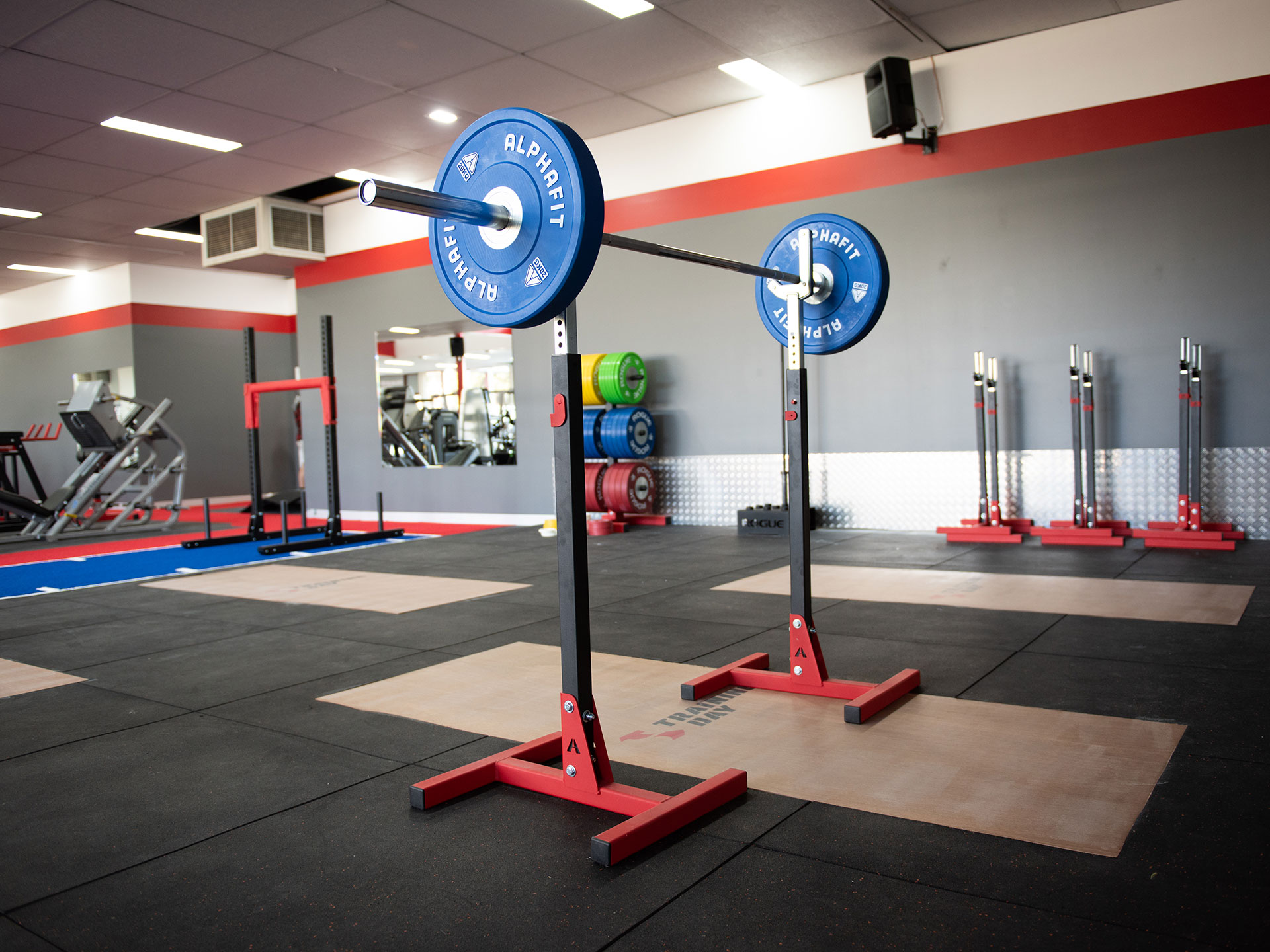 Training Day Commercial Gym Fitout