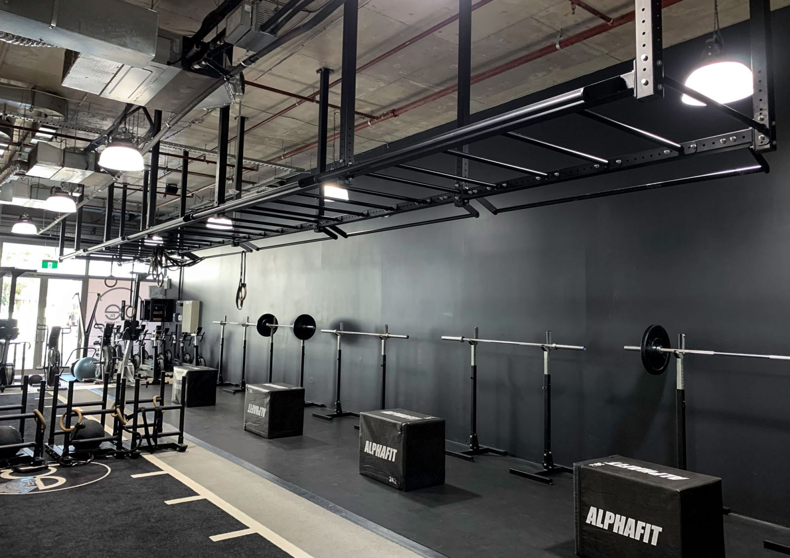 AlphaFit Ceiling Mounted Monkey Bar Rig